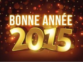 voeux-2015-290x217