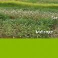 >>>Article préfecture du Puy-de-Dôme >>>Arrêté préfectoral portant dérogation temporaire aux dispositions relatives à la couverture du sol pour les intercultures longues définies dans le programme d'action national et régional«Nitrates» et liste des communes vulnérables >>>Formulaire de déclaration de dérogations «sécheresse 2016»