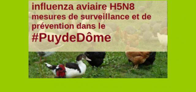 >>>Biosécurité communes du Puy-de-Dôme, lire la documentation >>>Pour en savoir plus >>>Mais aussi http://www.puy-de-dome.gouv.fr/h5n8-mesures-a-l-attention-des-detenteurs-de-a5883.html