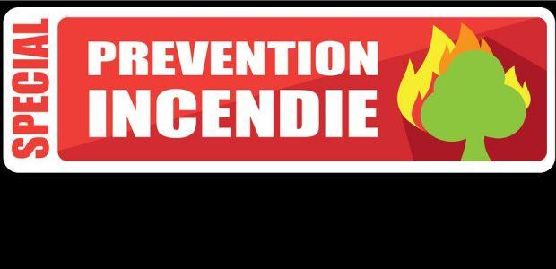 En raison des fortes chaleurs, qui sont susceptibles de favoriser dans les prochains jours les départs de feux de forêt ou d'espaces naturels, voici le rappel de la réglementation des feux de plein air, des écobuages et brûlages de végétaux. En effet, le mois dernier, le Service Départemental d'Incendie et de Secours a réalisé une centaine [...]
