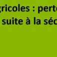 Le comité national de gestion des risques en agriculture, a reconnu, suite à la consultation écrite réalisée pour la session du 25 mars 2020, dans le cadre des calamités agricoles dans le Puy-de-Dôme consécutives à la sécheresse qui a frappé le département en 2019 : – les pertes de récolte et pertes de fonds sur plantes [...]