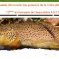 >>>Clic pour voir le programme de ces deux journées de la fédération départementale de pêche >>>Le programme détaillé d'Anis Etoilé >>>Le portail d'Anis étoilé