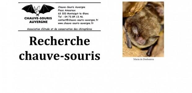 >>>Plus d'infos Partagez