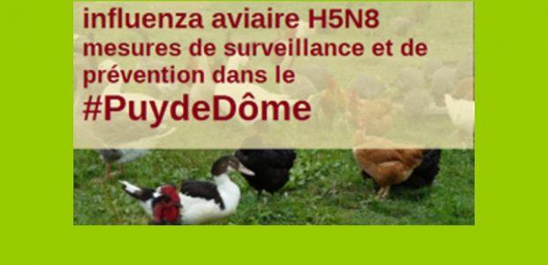 >>>Biosécurité communes du Puy-de-Dôme, lire la documentation >>>Pour en savoir plus >>>Mais aussi http://www.puy-de-dome.gouv.fr/h5n8-mesures-a-l-attention-des-detenteurs-de-a5883.html Partagez