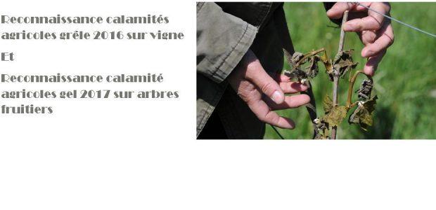 Pour solliciter une demande d'indemnisation au titre de la perte de fonds, il faut déposer un dossier de demande auprès de la Direction Départementale des Territoires du Puy-de-Dôme avant le 15 février 2018 >>>Accès aux arrêtés, au formulaire depuis le portail de la Préfecture du Puy-de-Dôme Partagez