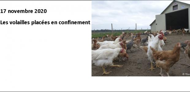 Les volailles placées en confinement clic pour agrandir Le préfet du Puy-de-Dôme vient de prendre de nouvelles mesures, face au risque d'influenza aviaire, après la détection d'un foyer en Haute-Corse.  La préfecture du Puy-de-Dôme a pris des mesures concernant les volailles et autres gibiers à plumes. Elles sont liées à un foyer hautement pathogène détecté dans le rayon d'une [...]